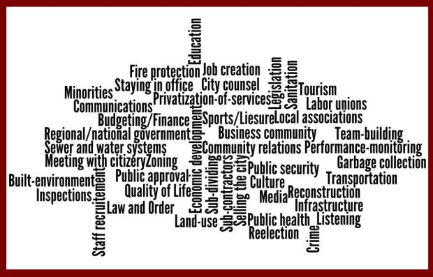 local government competences