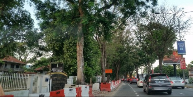 Penang - adding a traffic lane and cutting down ancient trees to increase traffic